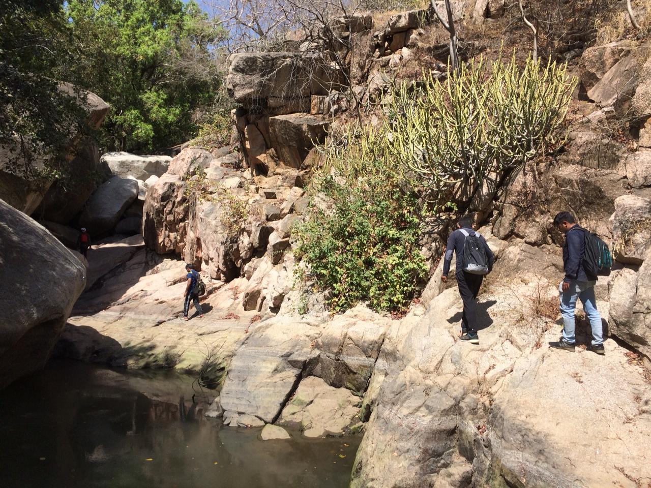 We the trekkers in Jungle Trek