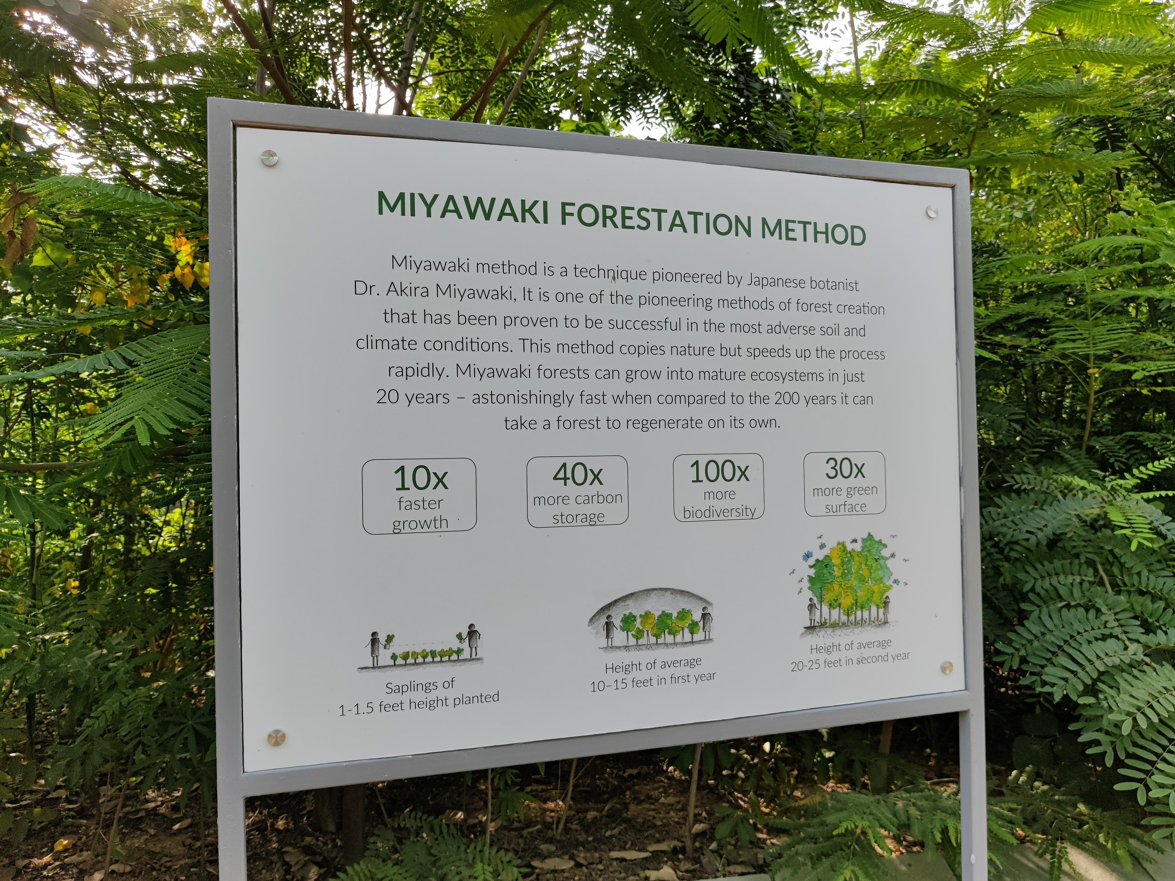 Mayawaki Technique oxygen Park
