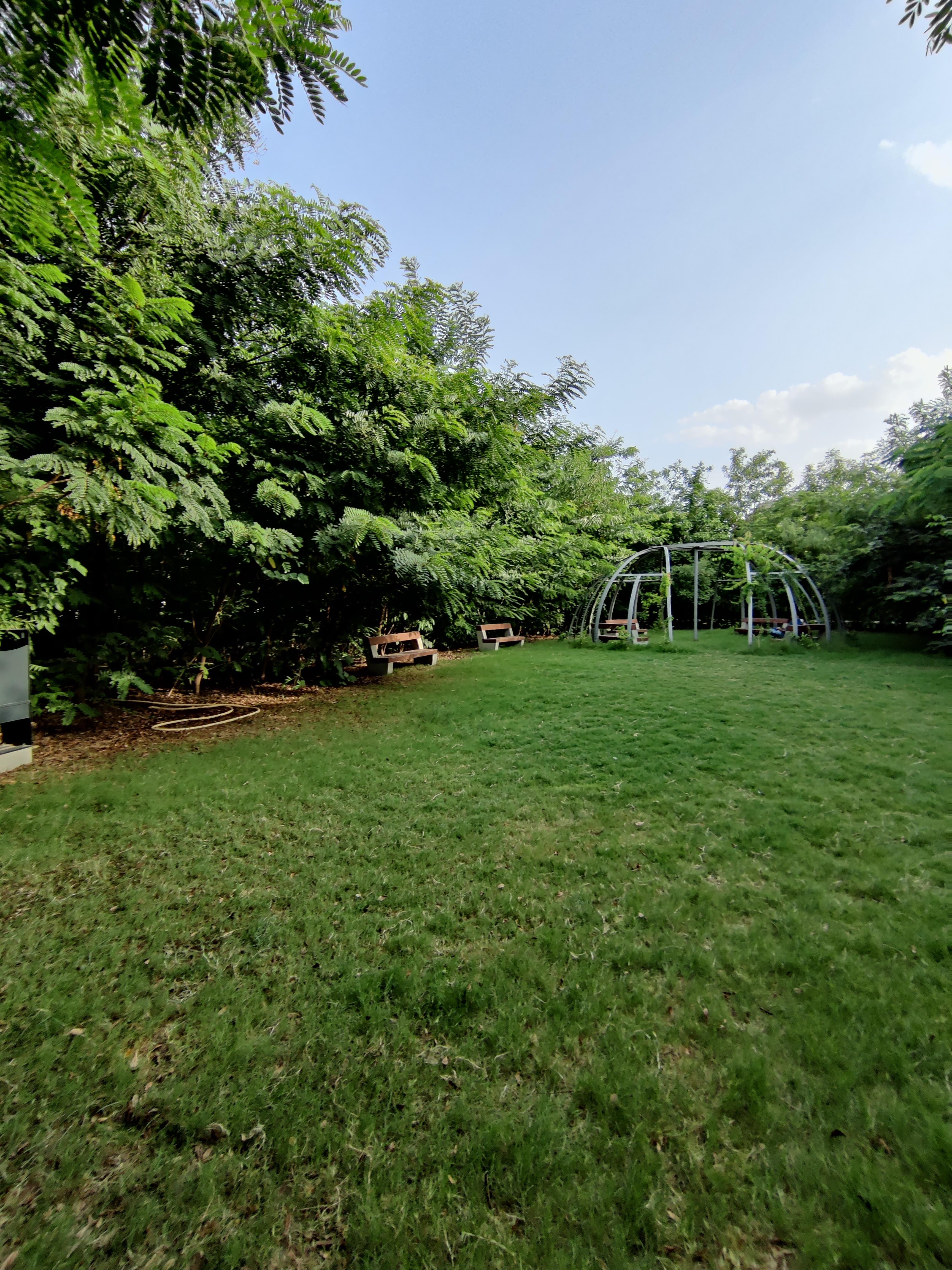 Garden in oxygen park