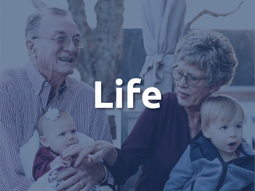 Life Insurance Banner