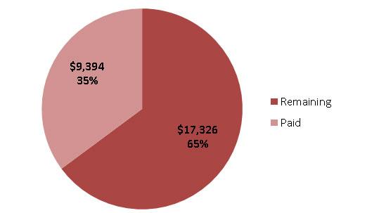 Debt By Numbers - My Alternate Life
