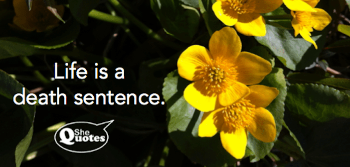 shequotes-life-is-a-death-sentence-cropped