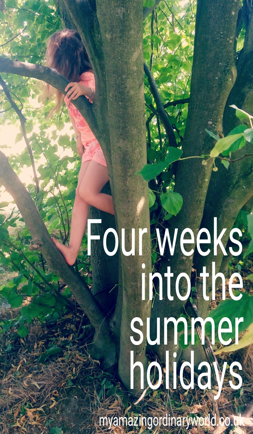 Four weeks into the summer holidays