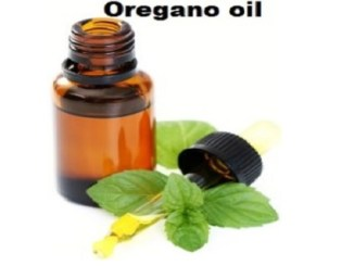 oil of wild oregano
