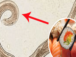 7-Early-Warning-Signs-You-Have-a-Worm-in-Your-Brain-From-Eating-Sushi