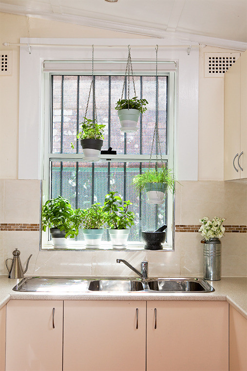 Truly Amazing Ways To Display Your House Plants - Page 3 of 3 on Remodel:ll6Wzx8Nqba= Small Kitchen Ideas  id=25970