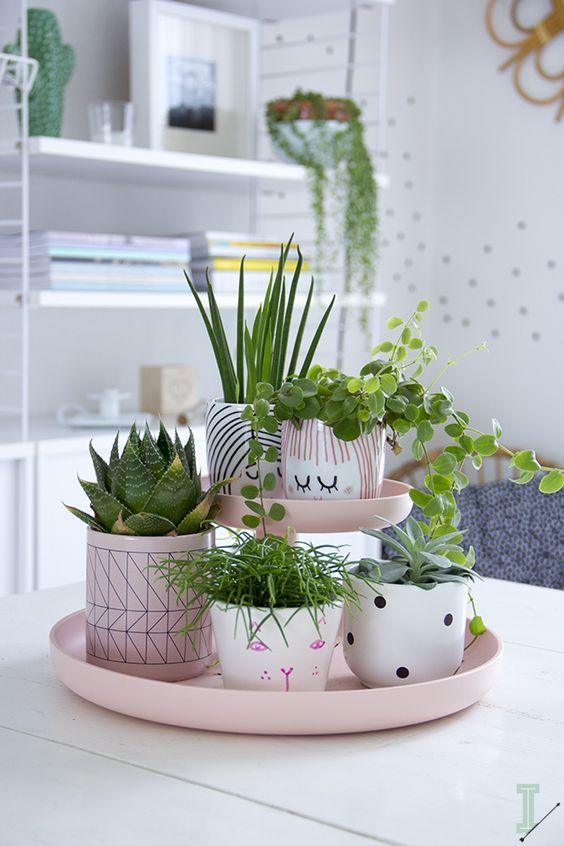 Truly Amazing Ways To Display Your House Plants Page 2 Of 3