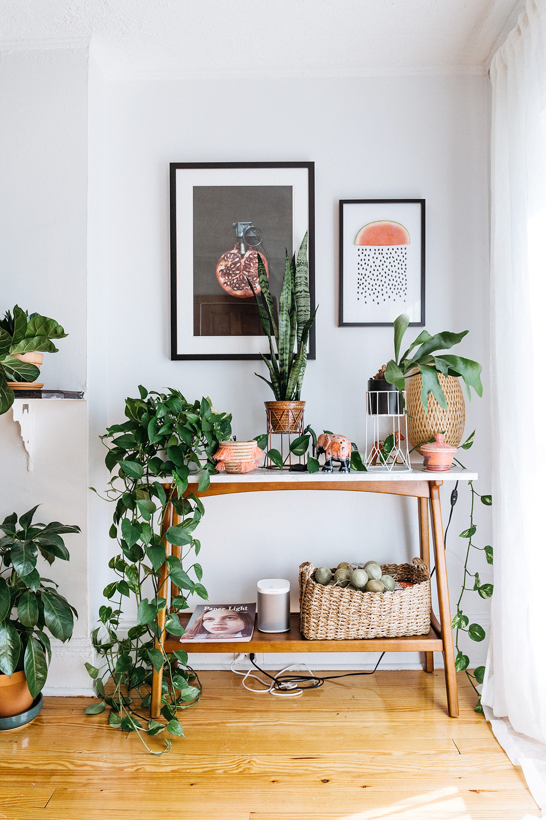 Nicole franzen having a small space may burden you with more storage issues than your nei. Bring Climbing Vines Indoor And Make Your Home Look Like A