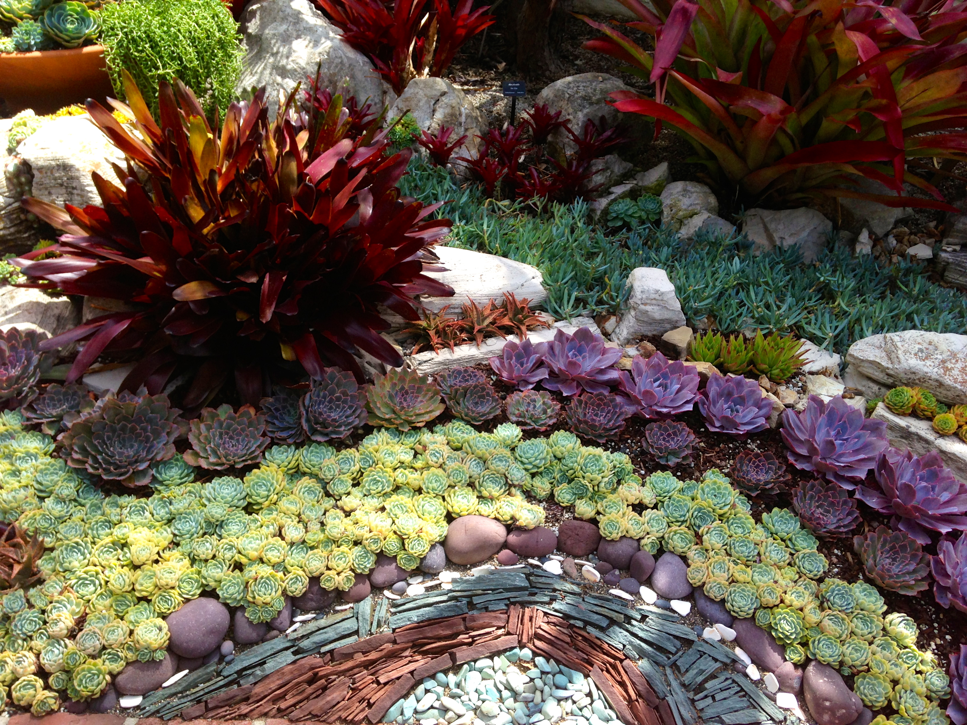 15 Delightful Succulent Gardens That Will Inspire You