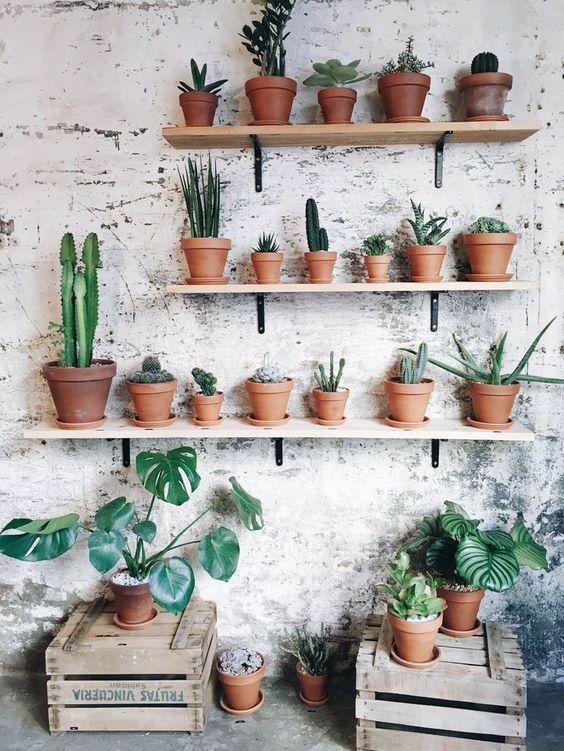 Metal Wall Planters Indoor
