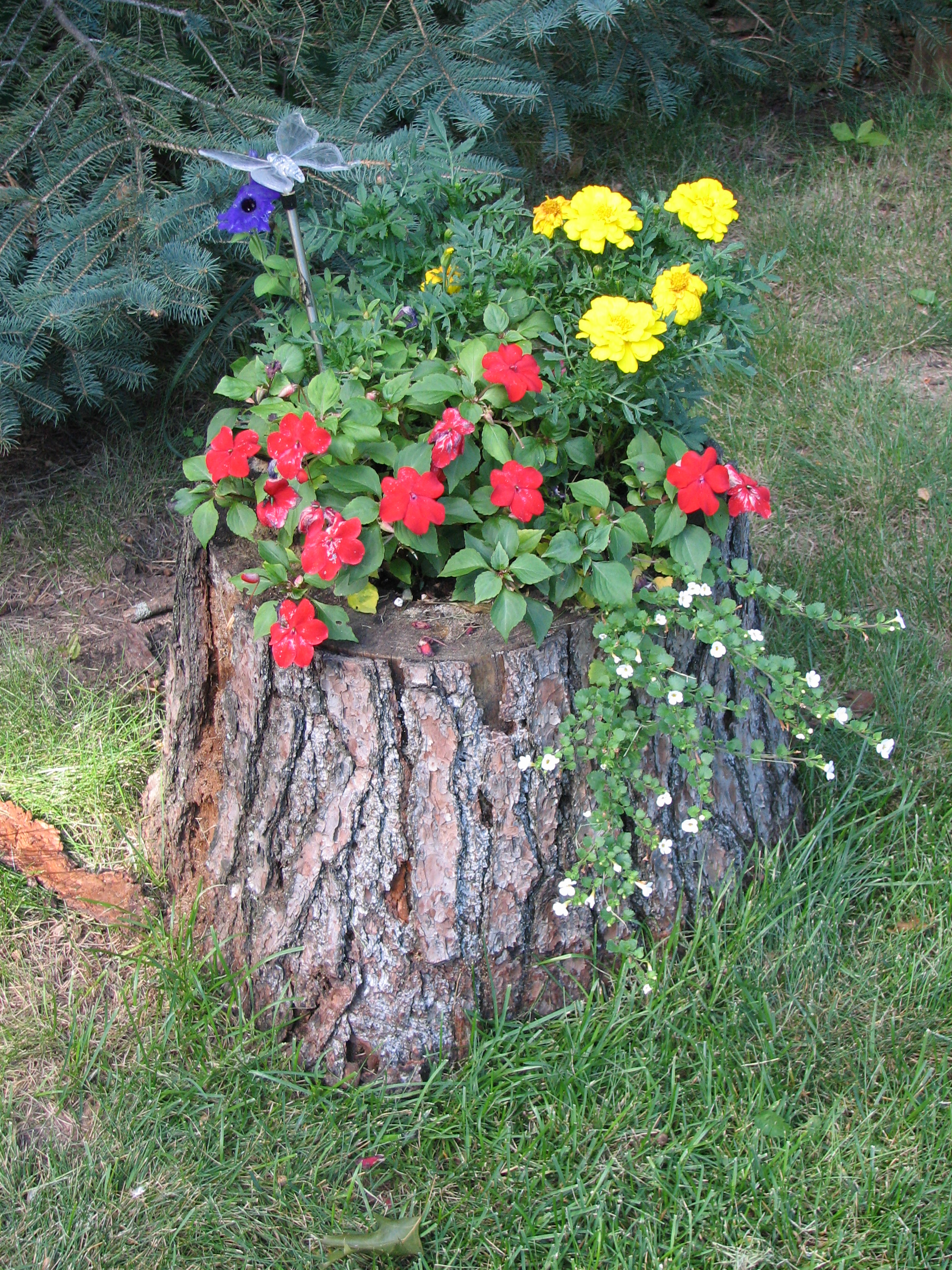 Tree Trunk Ideas That Make Excellent Decor For Your Garden on Tree Planting Ideas For Backyard id=30686