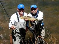 A rainbow trout caught in the South Platte River near Deckers, CO.