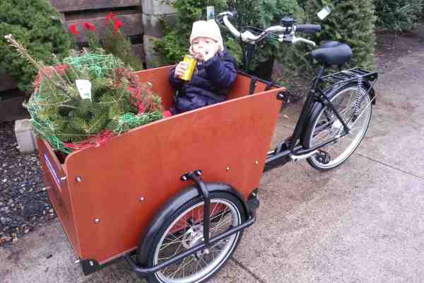 Cargo Bike for sale