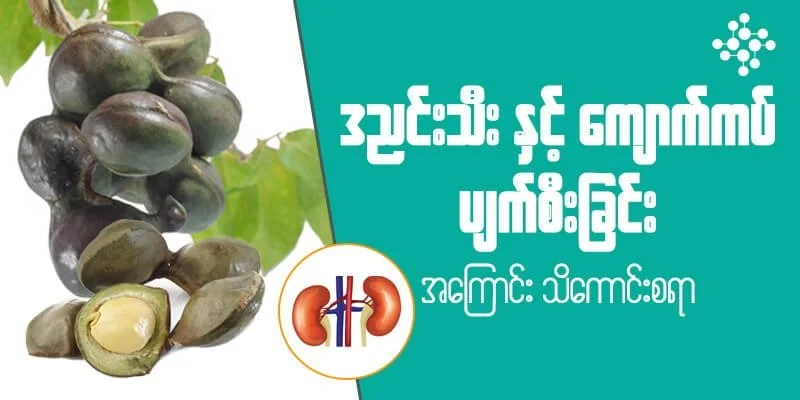 MyanCare Urine and Kidneys 5