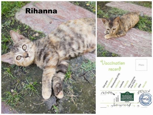 mini-Rihanna PicMonkey Collage