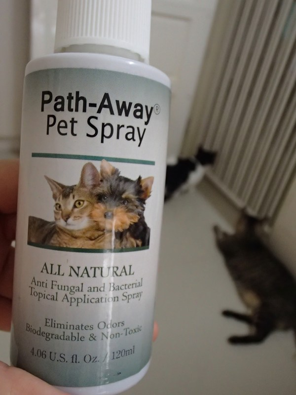 9 Path-Away with Tiger & Indy