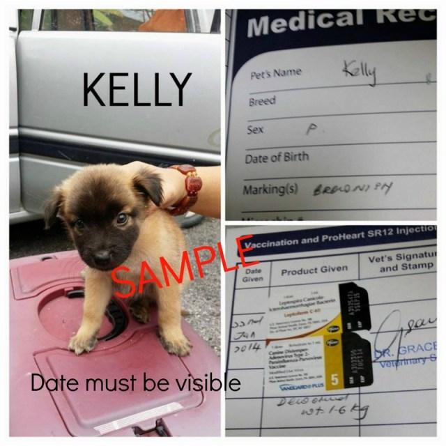 SAMPLE vacci dog