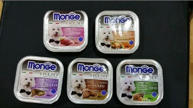 Monge Dog