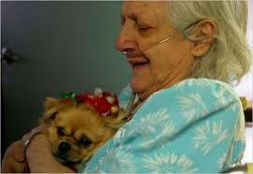 Old-woman-and-dog