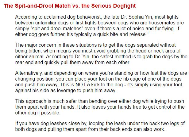 how to safely break up a dogfight