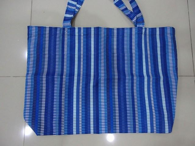 mini-P2260708