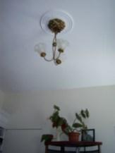 Antique light fixture and plaster medallion
