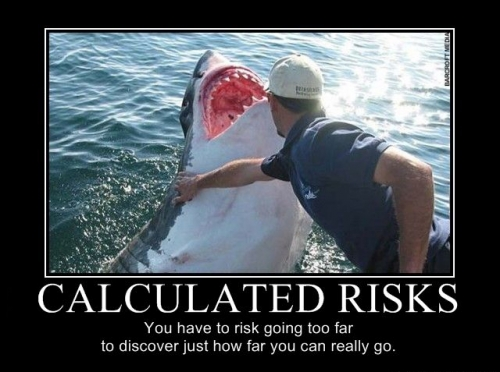 calculated-risks-you-have-to-risk-going-too-far-to-discover-just-how-far-you-can-really-go.thumbnail1