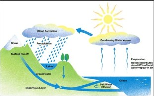 watercycle1
