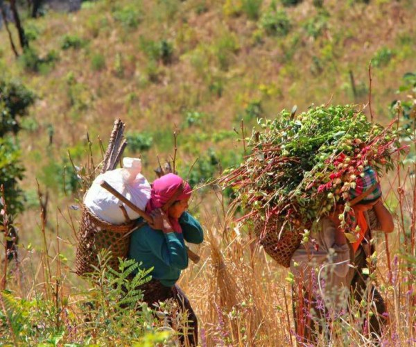 Farmer lives in Chin State