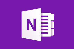 OneNote logo File folder icon with N on purple background