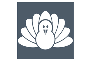 Cold Turkey logo, cartoon turkey on grey/blue background