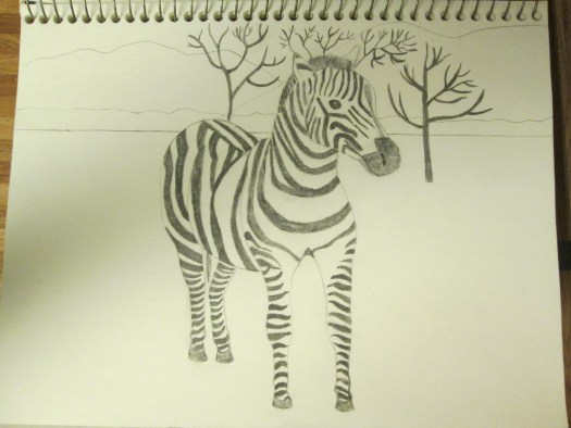 Drawing The Zebra