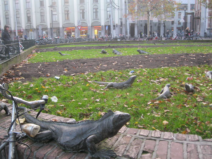 25. Park Iguanas, Amsterdam