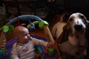 Jack & Lilu