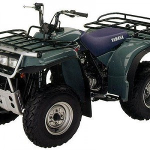 19922000 Yamaha Timberwolf 250 Factory Service Manual LIT