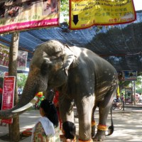 Beautiful summer palace, Bang Pa-In Royal Palace, Amazing Thailand part 4