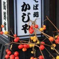 Varieties of Ukiyoe Cats by Kuniyoshi, Ota museum in Tokyo