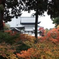 Set fire to the golden pavilion, Kinkakuji temple, Kyoto