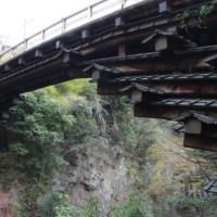 "Monkey's bridge ""Saruhashi"" in Otsuki"