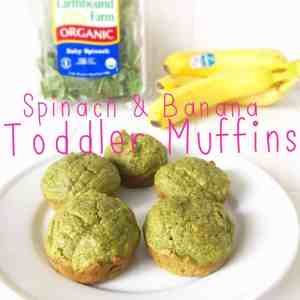 Food Recipe For Toddlers 64