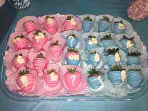 Gender Reveal Party 20