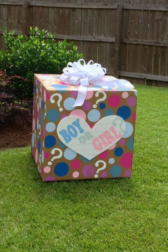 Gender Reveal Party 53