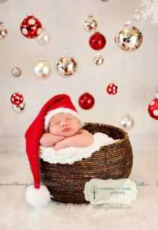 Newborn Christmas Pictures 6