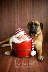 Newborn Christmas Pictures 9