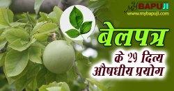 बेलपत्र : औषधीय गुणों से मालामाल एक दिव्य वनस्पति | Bel patra ke fayde in hindi