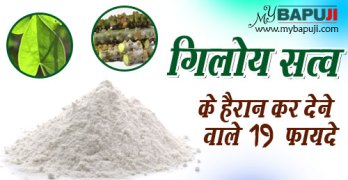 Benefits of giloy Satva in hindi