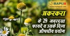 अकरकरा के 29 जबरदस्त फायदे व उसके दिव्य औषधीय प्रयोग | Akarkara Benefits in Hindi