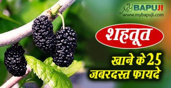 Shahtoot Ke Fayde in hindi Health Benefits Of Mulberries