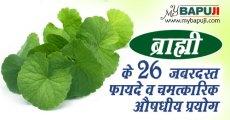 ब्राह्मी के 26 जबरदस्त फायदे व चमत्कारिक औषधीय प्रयोग | Brahmi ke Fayde Hindi