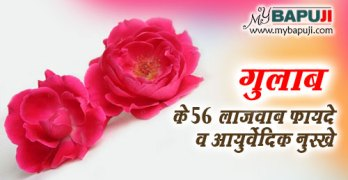 Gulab Phool ke Fayde in Hindi Rose Benefits